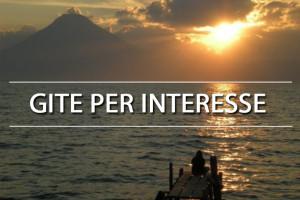 Gite per interesse