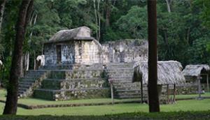 Ceibal  306