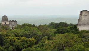 Tikal Tour - 307